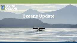 Oceans Update October 2020
