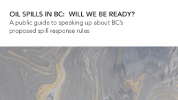 A public guide to speaking up about B.C.'s proposed spill response rules